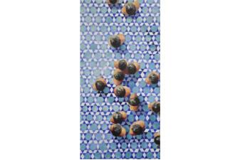 Mavi Motif 2013 Tuv. Üz. Yağlıboya 120x60 cm.